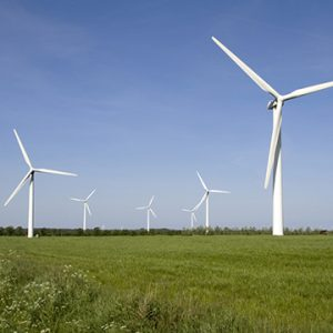6 white windmills on a grass field