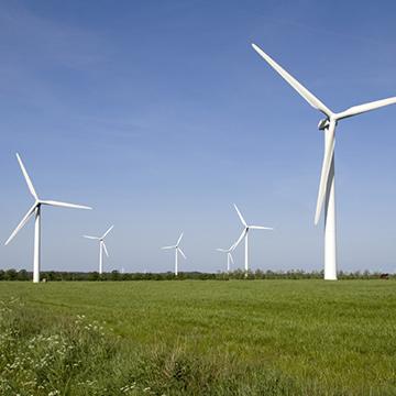 6 white windmills on a grass field