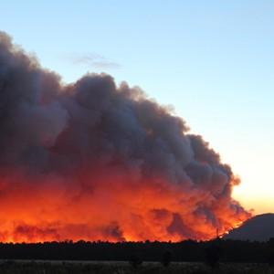 Large Plume of Smoke