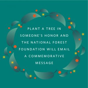 """blue background with blue leaves surrounding wording in white letters """"Plant Tree In Someone's Honor And The National Forest Foundation Will Email A Commemorative Message"""""""
